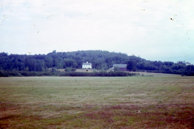 farm from lower meadow